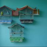 Гнездо для волнистых попугаев своими руками