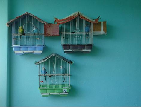 Домик для попугаев своими руками из фанеры