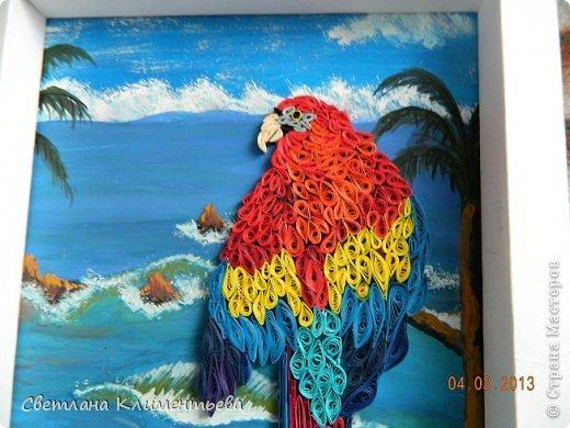 квиллинг попугаи