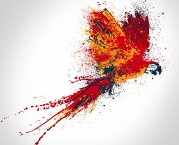 Рисунок попугая