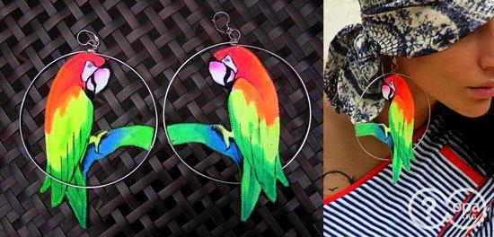 попугаи серьги