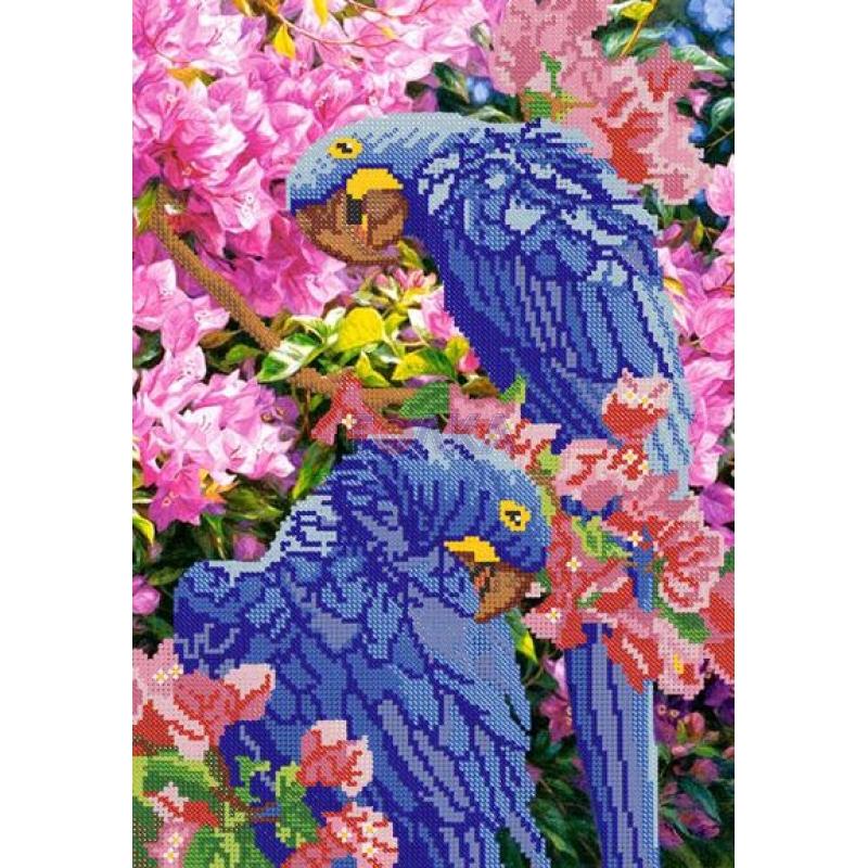 вышивка попугая