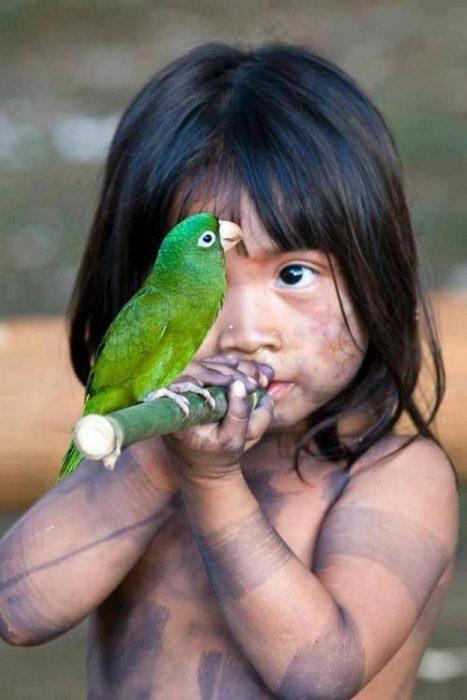 Попугай для ребенка: какой лучше, что нужно знять